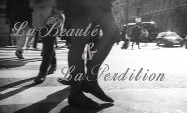 Visuel du projet La Beauté et la Perdition