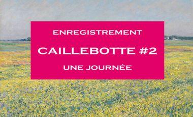 Visuel du projet Enregistrement Caillebotte #2 - Une Journée