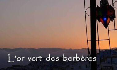 Project visual L'or vert des berbères