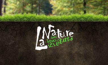 Visuel du projet La nature dans tous ses états