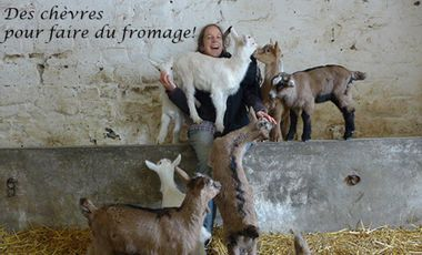 Visuel du projet Des chèvres pour faire du fromage