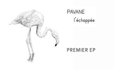 Visueel van project PAVANE - Premier EP