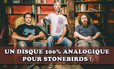 Visueel van project Un disque 100% analogique pour Stonebirds