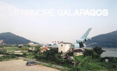 """Visuel du projet """"Le Principe Galápagos"""", catalogue de l'exposition"""