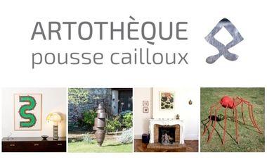 Project visual Artothèque Pousse Cailloux