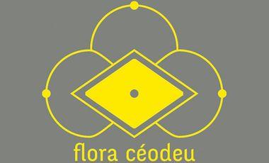 Visuel du projet Flora céodeu