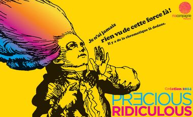 Visueel van project Precious Ridiculous