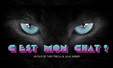 Project visual C'est mon chat!