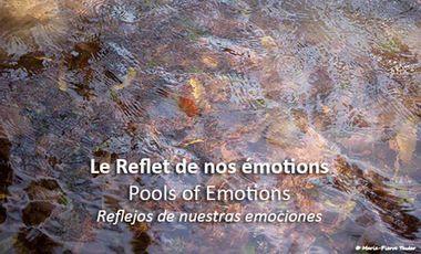 Project visual Le Reflet de nos émotions