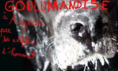Project visual Goulumandise