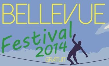 Project visual Festival Bellevue 2014