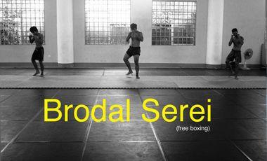 Visueel van project Brodal Serei