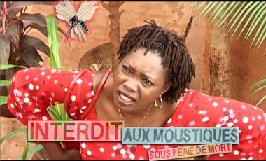 Visueel van project Interdit aux moustiques !!!