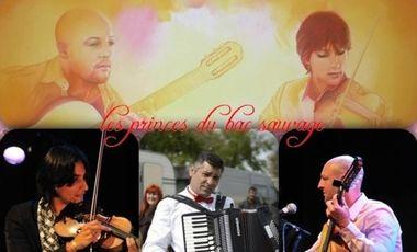 Visueel van project Les Princes du Bac Sauvage - voyage musical sans frontières