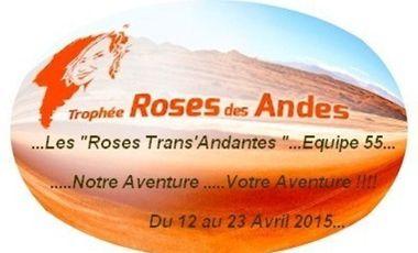 Visueel van project Les Roses Trans'Andantes au Rallye Roses des Andes 2015