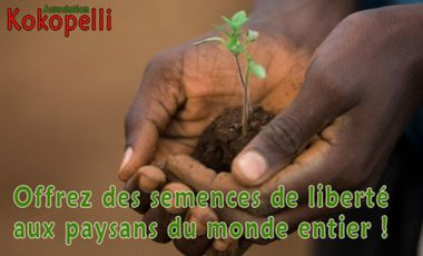 "Project visual La campagne ""Semences sans Frontières"" de l'association Kokopelli"