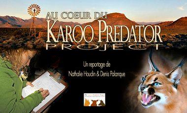 Visuel du projet Au coeur du Karoo Predator Project - At the Heart of the Karoo Predator Project