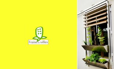 Project visual Fraise des villes