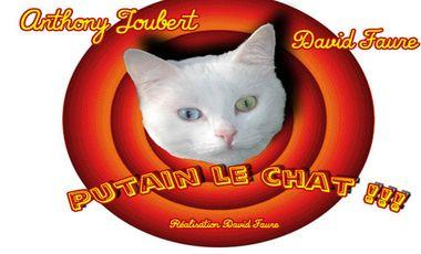 Project visual Putain le Chat !!! Un court-métrage humoristico-fantastique !!!