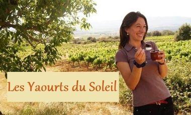 Project visual Les Yaourts du Soleil : des vaches Jersiaises dans l'Hérault