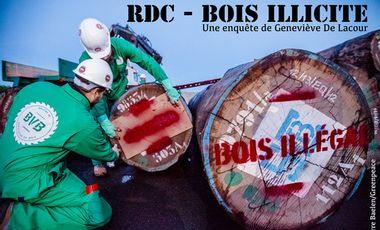 Project visual RDC - Bois illicite