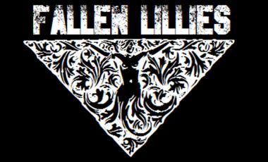 Project visual Fallen Lillies en studio et release de l'EP