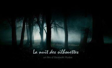 Project visual La Nuit des Silhouettes
