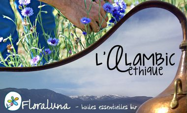 Visueel van project Floraluna : un alambic à énergies renouvelables !