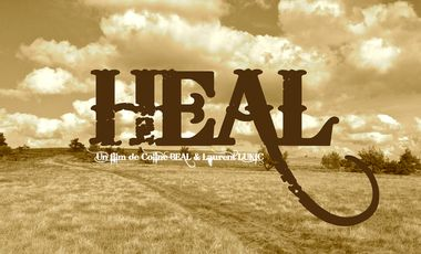 Project visual HEAL