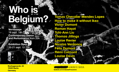 Project visual Who is Belgium?