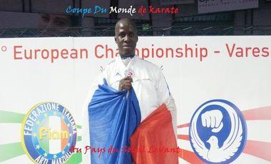 Visueel van project Coupe du Monde de Karaté au JAPON
