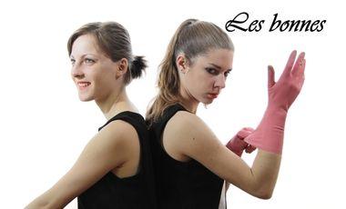 Visueel van project Les Bonnes