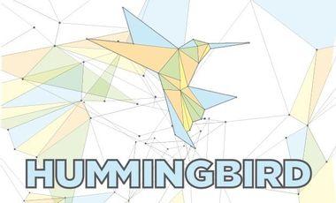 Visuel du projet Hummingbird - First EP & French Tour