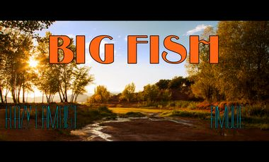 Visueel van project BIG FISH