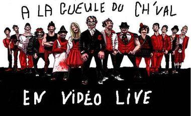 Visuel du projet Financement d'une vidéo d'A la gueule du ch'val en  LIVE !