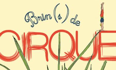 Project visual Brin(s) de cirque