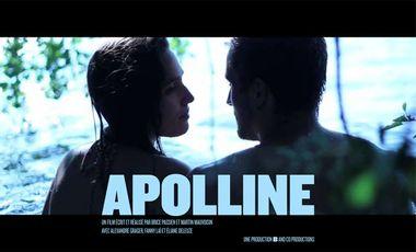 Visueel van project Apolline