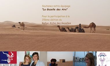 Visueel van project la Gazelle des Airs