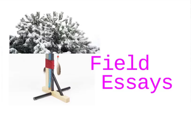 Visuel du projet Field Essays, Account of things that happened