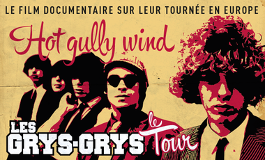 Visuel du projet Hot Gully Wind - Les Grys-Grys à travers l'Europe
