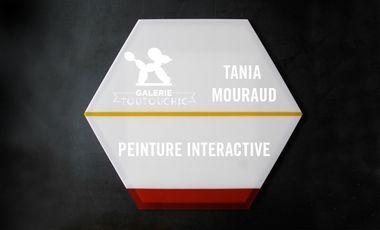 Visuel du projet Peinture Interactive de Tania Mouraud