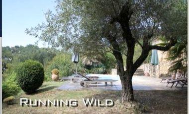 Visuel du projet Running Wild