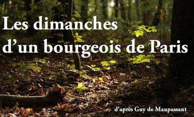Visuel du projet Les dimanches d'un bourgeois de Paris