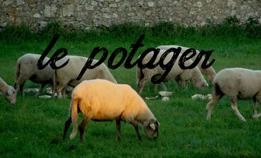 Visueel van project Le potager