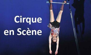 Visuel du projet Festival Cirque en Scène