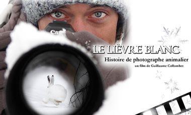 Visueel van project Le Lièvre Blanc