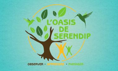 Project visual L'incroyable forêt comestible de l'Oasis de Serendip