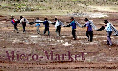 Visueel van project Micro Market