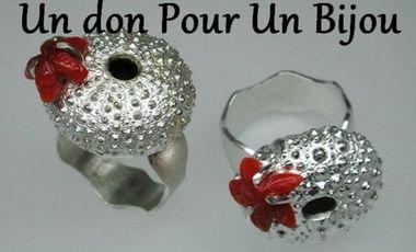Visueel van project Un don Pour un Bijou