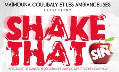 Visuel du projet Shake That Sin
